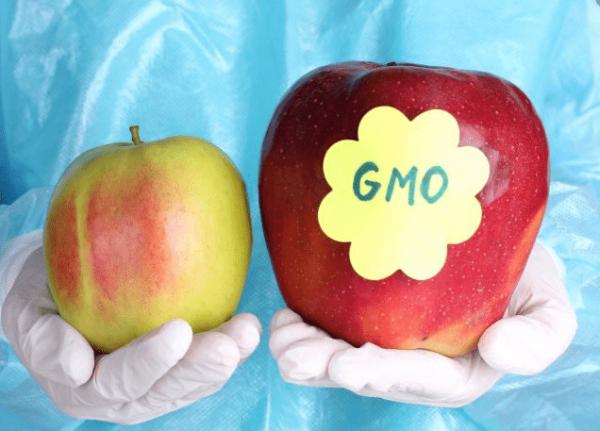 ГМО ябълки
