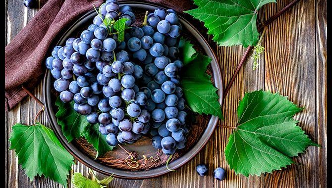 Виноград противопоказания к употреблению